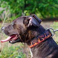 Flames Painted Leather Pitbull Collar for Walking and Training
