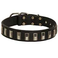 Fashion Leather Dog Collar with Vertical Nickel Plates