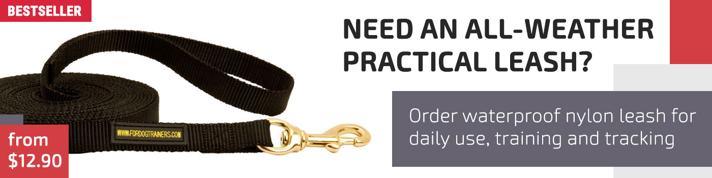 All-Weather Nylon Dog Leash for Training and Tracking