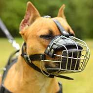 Wire Basket Pitbull Muzzle with Padded Nose Area